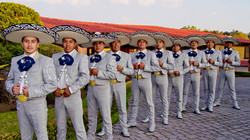 Mariachis | Conjuntos De Toluca