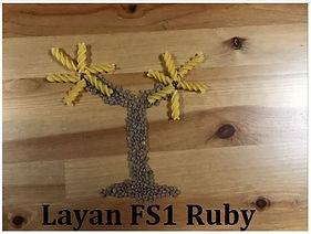 Layan FS1 Ruby.jpg