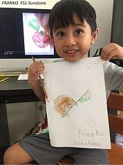 FRANKO FS1 Sunstone.jpg