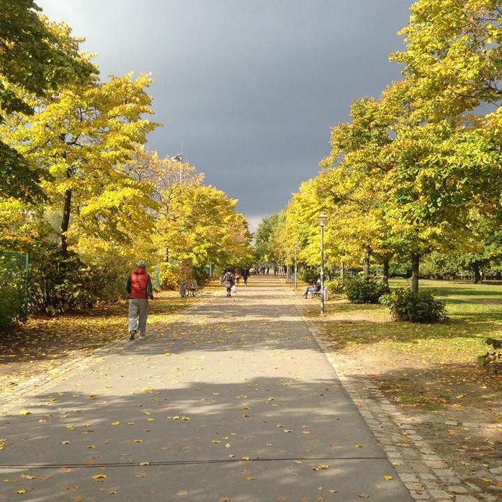 louis weidenkopf chronisch gesund spazieren