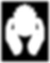 Capsule_Logo_Nav_Bar_White.png
