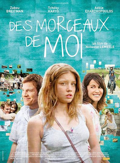 DES MORCEAUX DE MOI_120_BD.jpg