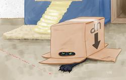 Stealth Ojdyn
