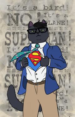 Super Ojdyn