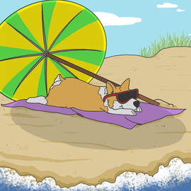 Corgi at the beach