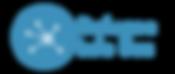 RIB logo.png