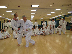 Shiomitsu Sensei  Clinic Wnter 2009