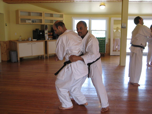 Karate Cam 2009