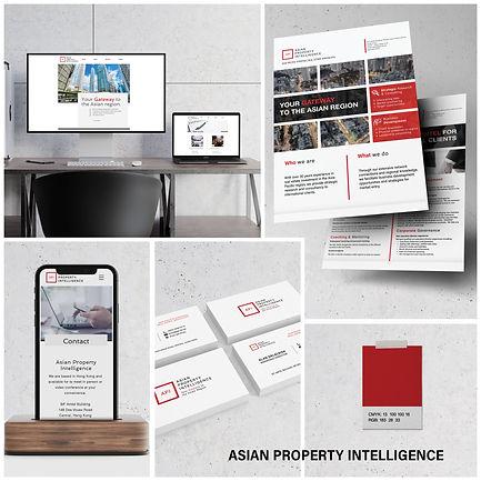 Asian Property Intelligence profile