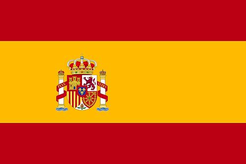 ONLINE B1 SPANISH / 20 HOURS