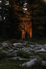 Last Light    Colorado, USA