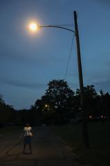 Our Evening Walk    Pennsylvania, USA