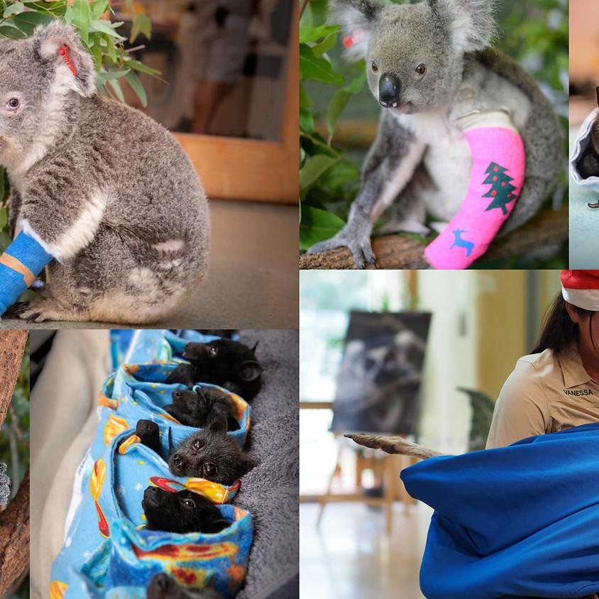 Fotoshoot tvv Australian Wildlife