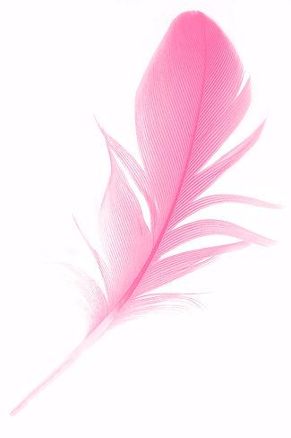 iStock-1278549656-edit-web.jpg