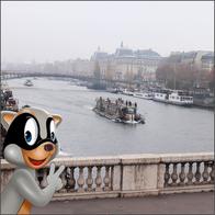 JOHNNY JUNG JUNG IN PARIS.png