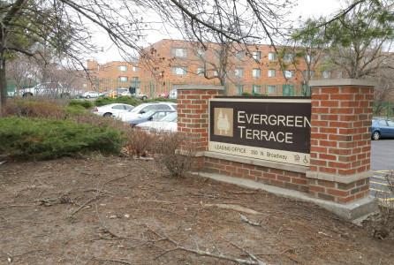 Evergreen Terrace (Handout)