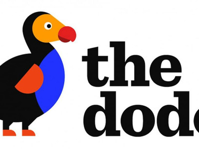 Dodo just wrote an article about our shelter! <3