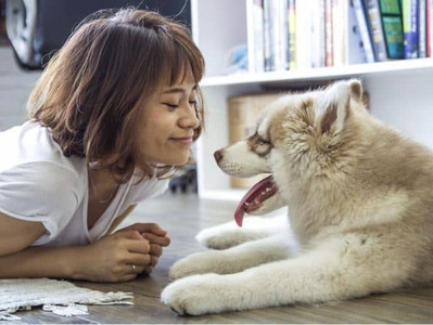 Three Reasons Why Dog Adoption Is The Best Option