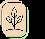 NLK Color Logo.png