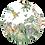 Thumbnail: Savanne dieren Muurcirkel