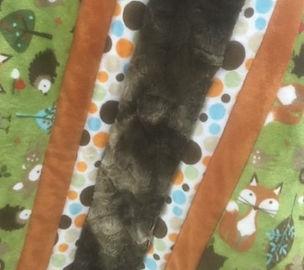 Cuddle Quilt Workshop.jpg