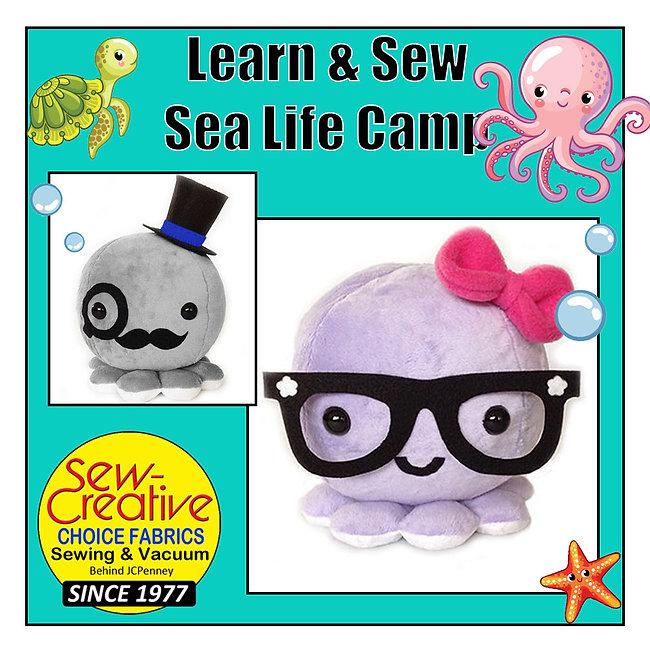 SewC Sea Camp Schema.jpg