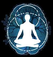 NeuroSculpting-Institute-brain-logo-1000