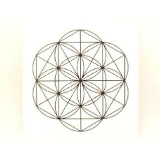 "8"" White & Black Laminated Grid Board"