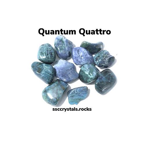 Quantum Quattro