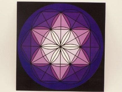 "8"" Purple Laminated Grid Board"