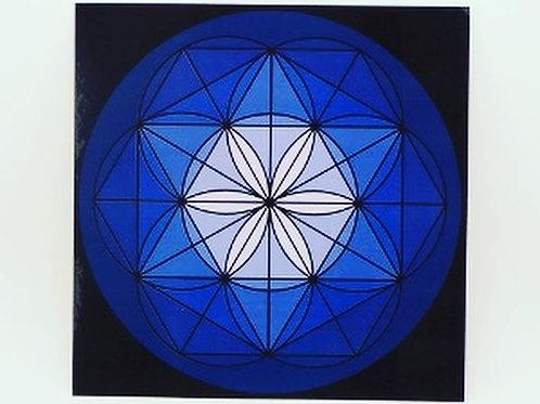 "8"" Dark Blue Laminated Grid Boards"