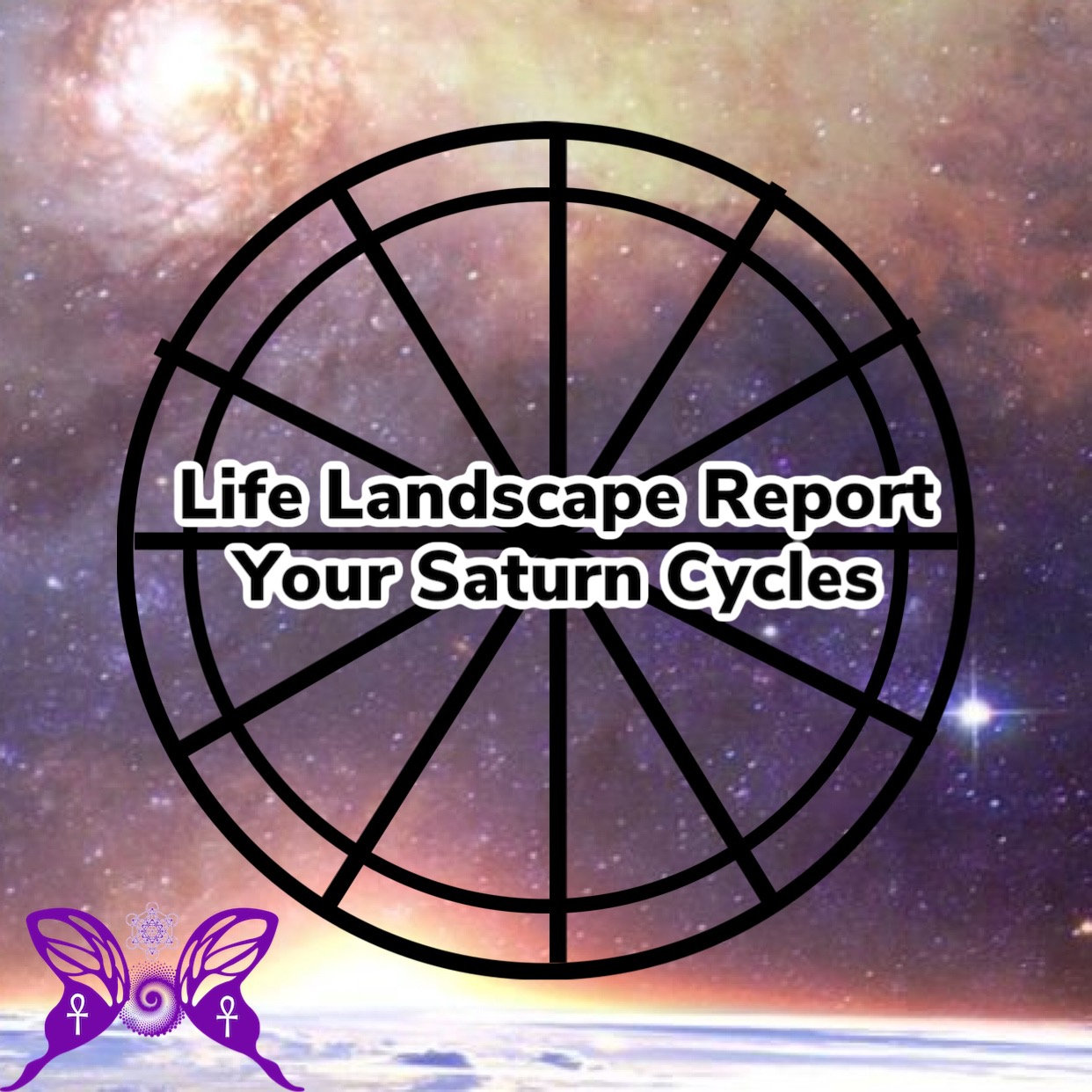 Life Landscape Report