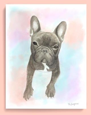 Watercolor Pet Portrait - Kona