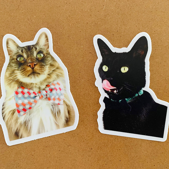Mischa And Sammy Stickers
