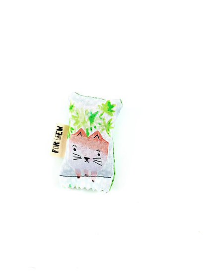 Kitty Planter Green Bean Catnip