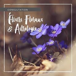boutons consultations - floraux.png