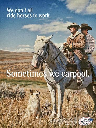 horsie jr.jpg