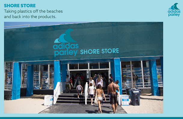 Proofs-03-00_Shore Store.png