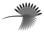 black and white Huppoe watermark .png
