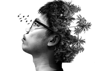 The psychological and practical mind
