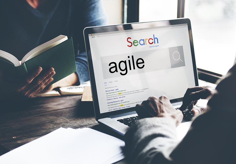 Suche Agile Coach