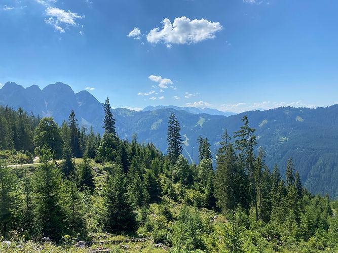 Hello Greens Mountains