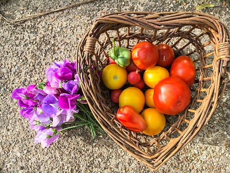 You'll always find fresh flowers in the Potting Shed and we're happy to share our garden produce!
