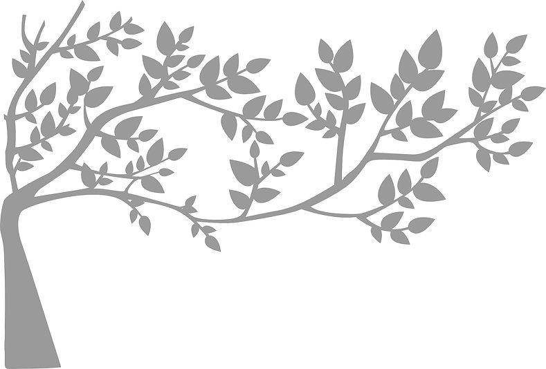 60%Branch.jpg