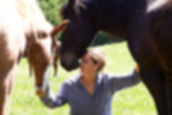 The Horse's Gift with Julie Bechu