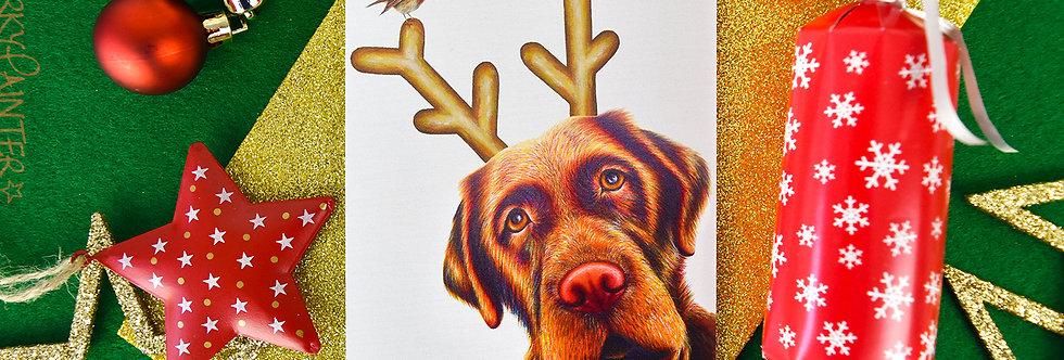 Rudog Christmas Card