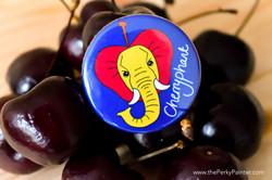 www.thePerkyPainter.com Fruinimal Fridge Magnet cherryphant magnet