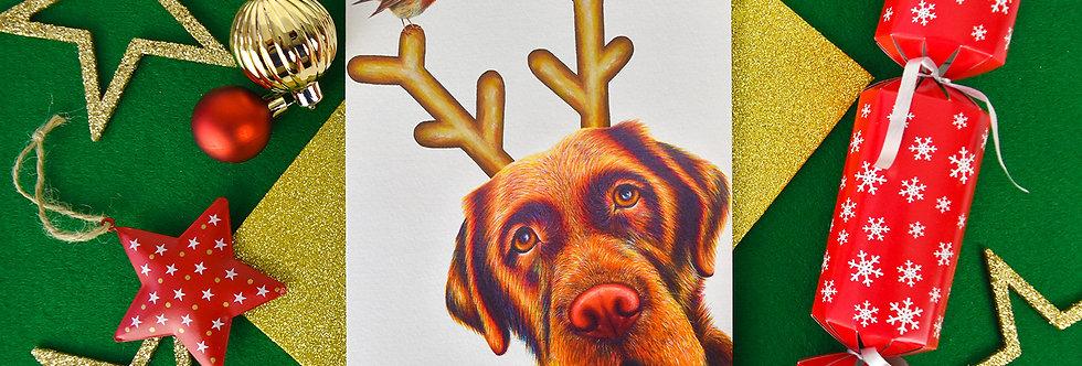 Rudog Large Christmas Card