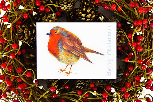 Radiant Robin Christmas Card
