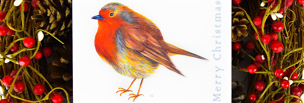 Radiant Robin Christmas Card